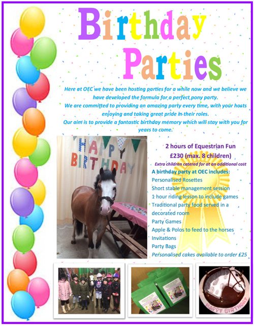 Birthday Pony Parties
